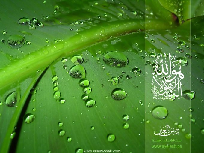 Islamic Wallpapers (11)
